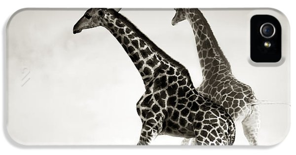 Giraffes Fleeing IPhone 5s Case by Johan Swanepoel