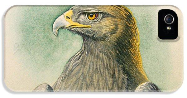 Eagle iPhone 5s Case - Golden Eagle Portrait by Paul Krapf