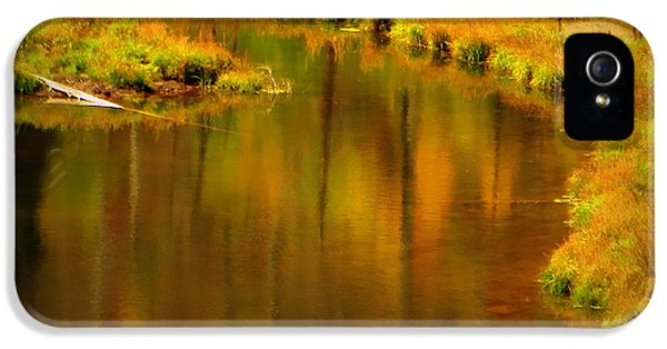 Golden Reflections IPhone 5s Case by Karen Shackles