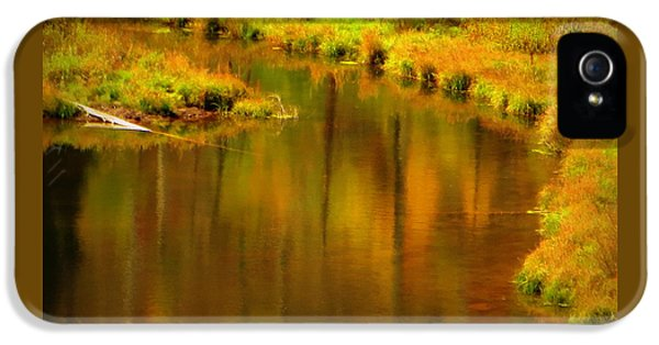 IPhone 5s Case featuring the photograph Golden Reflections by Karen Shackles