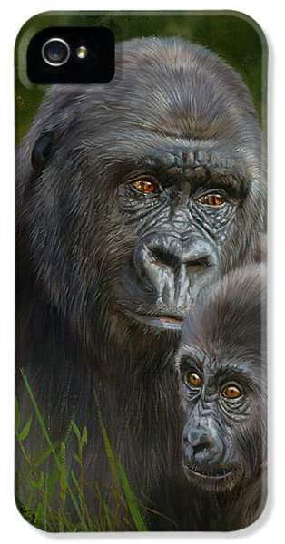 Gorilla And Baby IPhone 5s Case by David Stribbling
