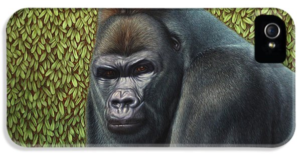 Gorilla iPhone 5s Case - Gorilla With A Hedge by James W Johnson