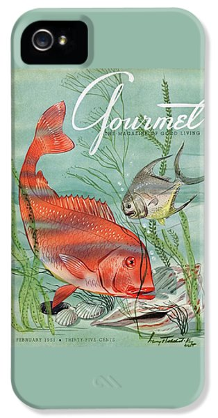 Gourmet Cover Featuring A Snapper And Pompano IPhone 5s Case by Henry Stahlhut