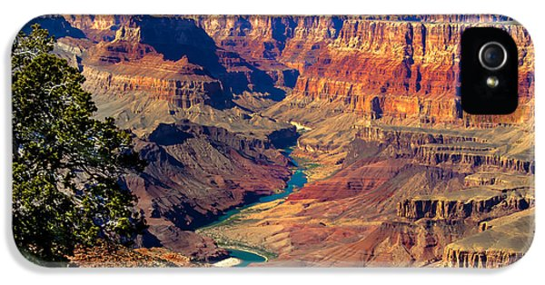 Grand Canyon iPhone 5s Case - Grand Canyon Sunset by Robert Bales