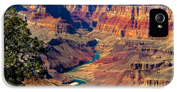 Grand Canyon Sunset IPhone 5s Case by Robert Bales