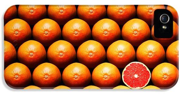 Grapefruit Slice Between Group IPhone 5s Case by Johan Swanepoel