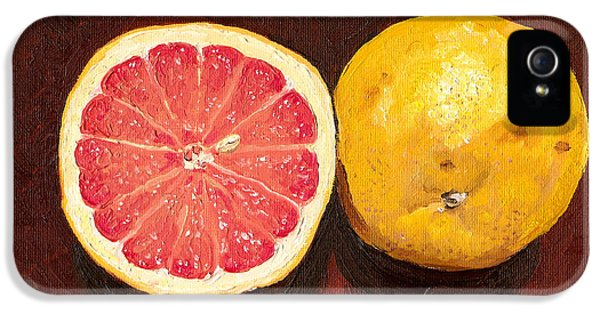 Grapefruits Oil Painting IPhone 5s Case by