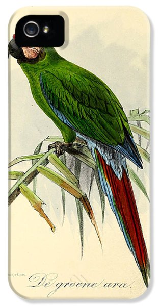 Green Parrot IPhone 5s Case