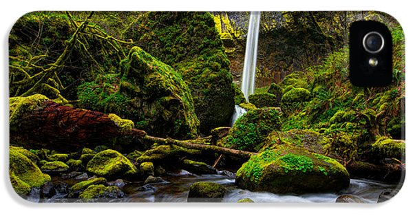 Green Seasons IPhone 5s Case by Chad Dutson