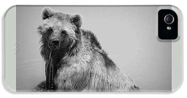 IPhone 5s Case featuring the photograph Grizzly Bear Bath Time by Karen Shackles