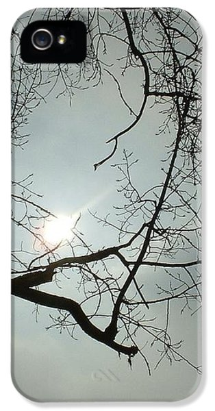 Grown In Cold Light IPhone 5s Case