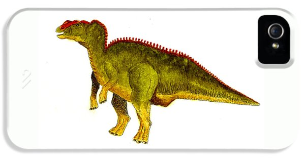 Hadrosaurus IPhone 5s Case