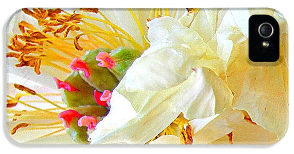 IPhone 5s Case featuring the photograph Heart Of Peony by Nareeta Martin