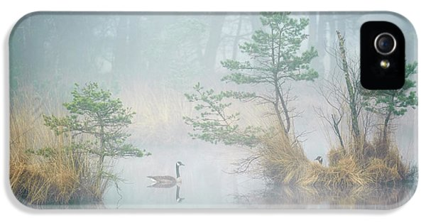 Goose iPhone 5s Case - Hide And Seek by Andrew George