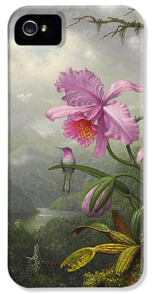 Humming Bird iPhone 5s Case - Hummingbird Perched On The Orchid Plant by Martin Johnson Heade