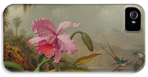 Humming Bird iPhone 5s Case - Hummingbirds And Orchids by Martin Johnson Heade