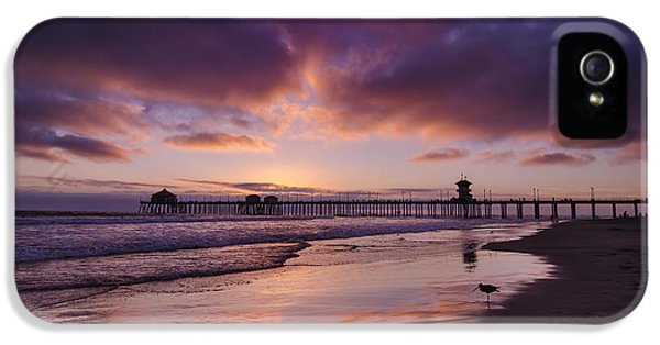 Sandpiper iPhone 5s Case - Huntington Beach California by Sean Foster