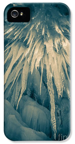 Loon iPhone 5s Case - Ice Cave by Edward Fielding