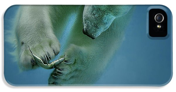 Polar Bear iPhone 5s Case - Icebaer by Peter Wagner
