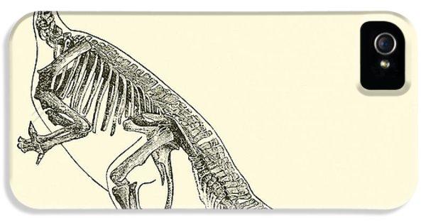 Iguanodon IPhone 5s Case