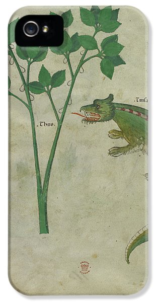 Crocodile iPhone 5s Case - Illustration Of A Plant And A Crocodile by British Library