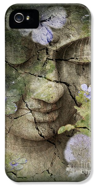 Garden iPhone 5s Case - Inner Tranquility by Christopher Beikmann