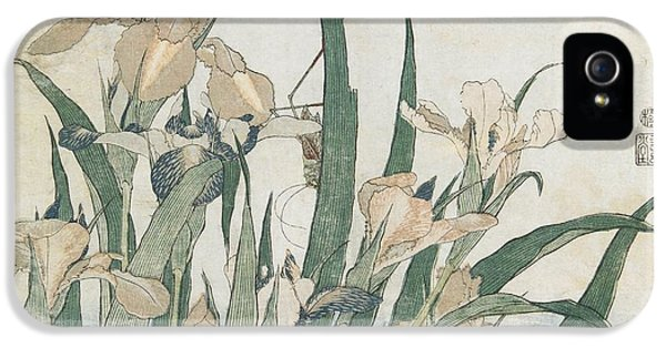 Grasshopper iPhone 5s Case - Iris Flowers And Grasshopper by Hokusai