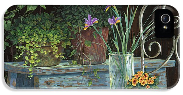 Irises IPhone 5s Case by Michael Humphries