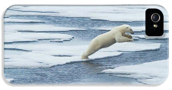 Polar Bear iPhone 5s Case - Jump! by Vadim Balakin
