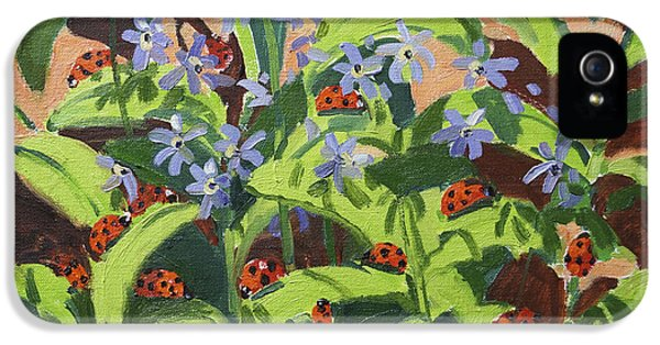 Ladybirds IPhone 5s Case by Andrew Macara