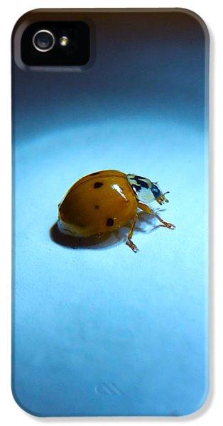 Ladybug Under Blue Light IPhone 5s Case