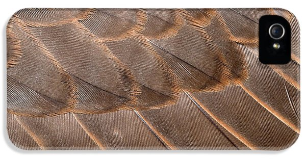Lanner Falcon Wing Feathers Abstract IPhone 5s Case