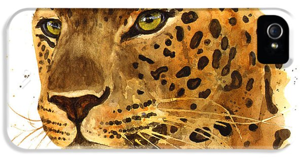 Leopard Gaze IPhone 5s Case by Alison Fennell