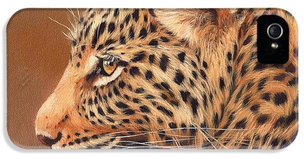 Leopard Portrait IPhone 5s Case by David Stribbling