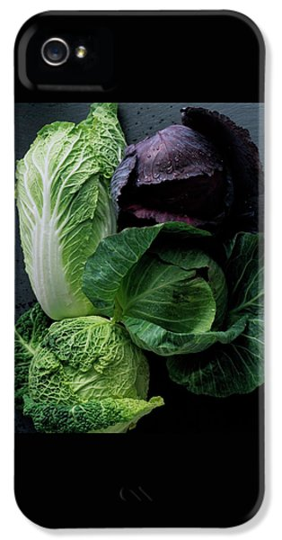 Cabbage iPhone 5s Case - Lettuce by Romulo Yanes