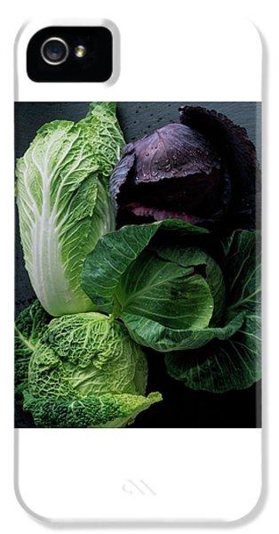 Lettuce IPhone 5s Case