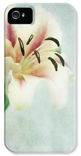 Lily iPhone 5s Case - Lilium by Priska Wettstein