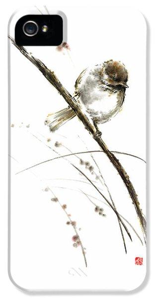 Little Bird On Branch Watercolor Original Ink Painting Artwork IPhone 5s Case