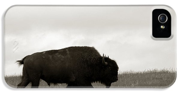 Lone Bison IPhone 5s Case