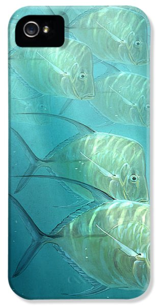 Lookdowns IPhone 5s Case by Aaron Blaise