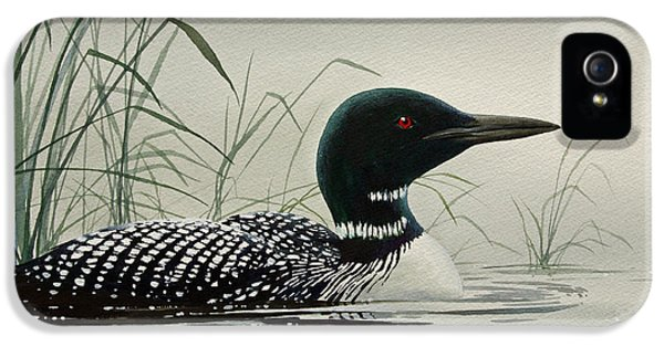 Loon iPhone 5s Case - Loon Near The Shore by James Williamson