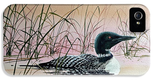 Loon iPhone 5s Case - Loon Sunset by James Williamson