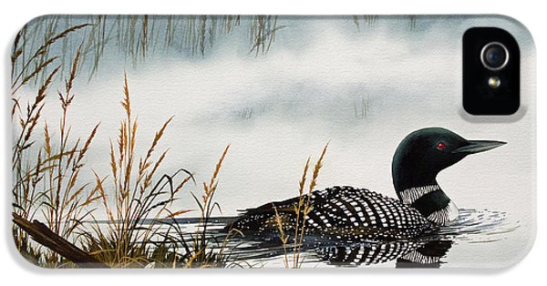 Loon iPhone 5s Case - Loons Misty Shore by James Williamson