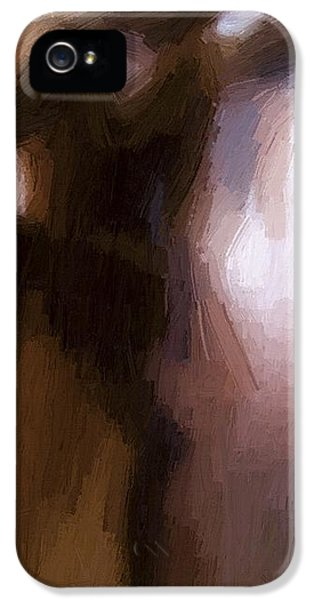 Lovers IPhone 5s Case