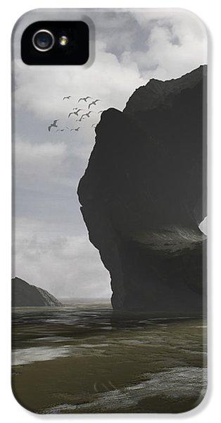 Low Tide IPhone 5s Case