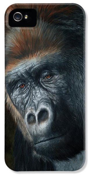 Gorilla iPhone 5s Case - Lowland Gorilla Painting by David Stribbling