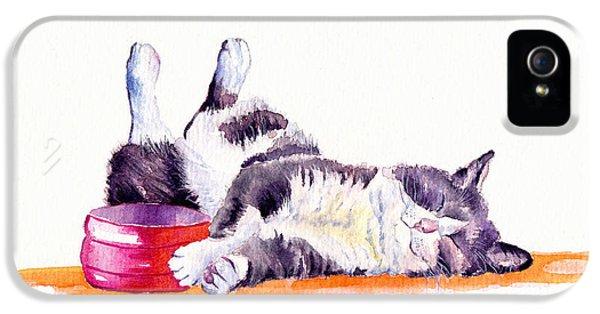 Cat iPhone 5s Case - Lunch Break by Debra Hall