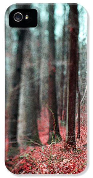 Magical Forest IPhone 5s Case by Kim Fearheiley
