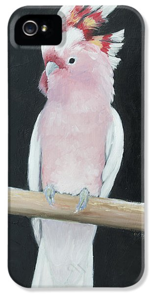 Major Mitchell Cockatoo IPhone 5s Case by Jan Matson