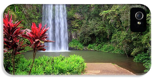 Far North Queensland iPhone 5s Case - Millaa Millaa Falls Is One by Paul Dymond